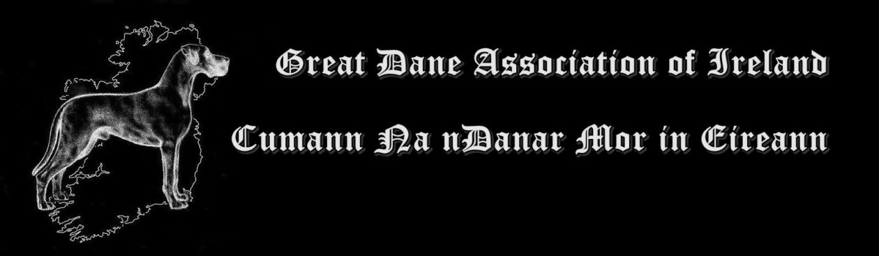 The Great Dane Association of Ireland Est 2016